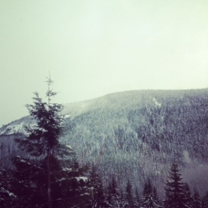 On our way to Mt. Hood. It's an hour from our house. We're spoiled like that.